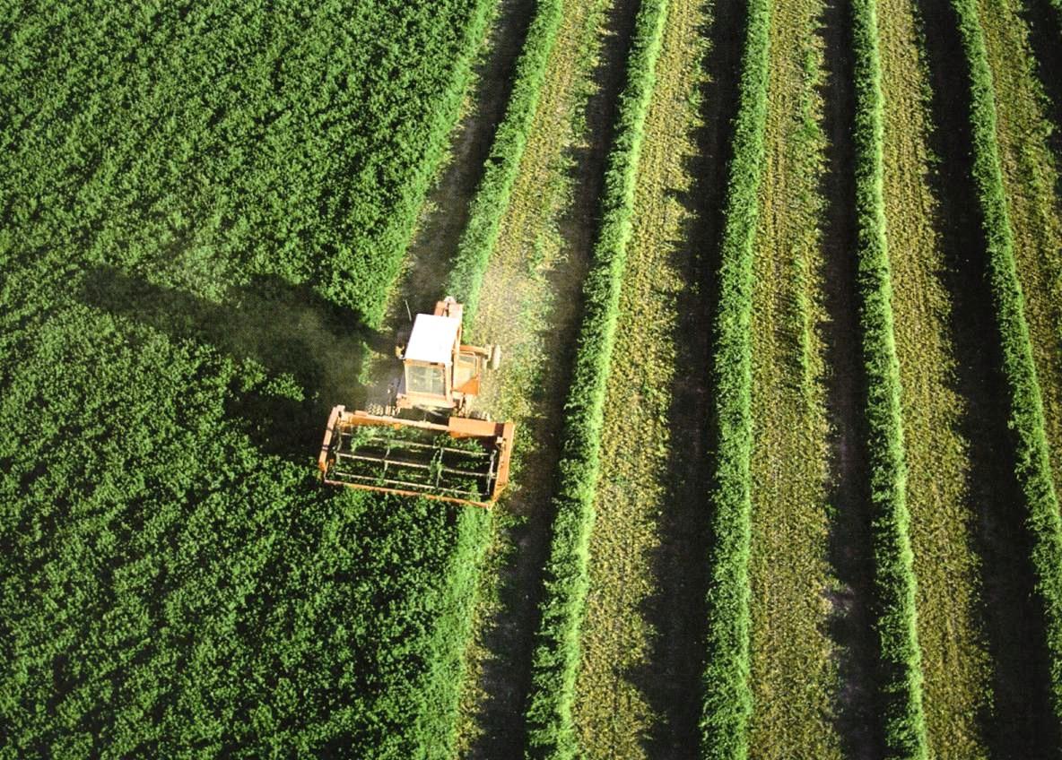 Maquinaria agrícola trabajando el campo