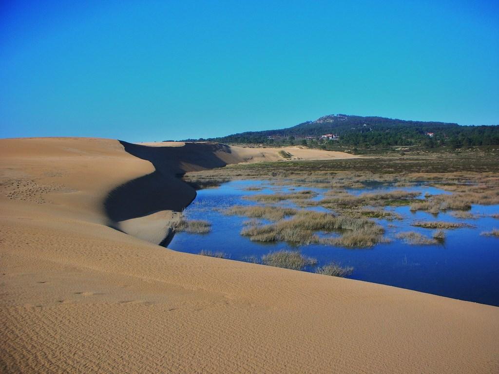 Dunas y Lagoa de Carregal... El gran parque.