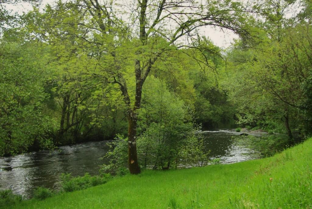 El Río Arnego te conduce por increíbles espacios verdes.