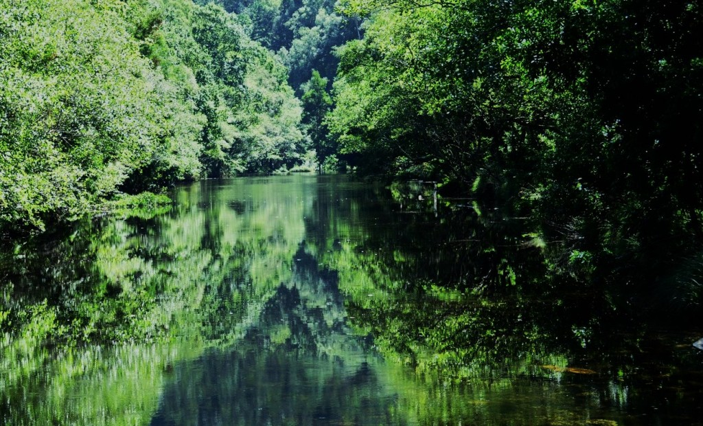 El río Sor, a punto de entregarse al Cantábrico.