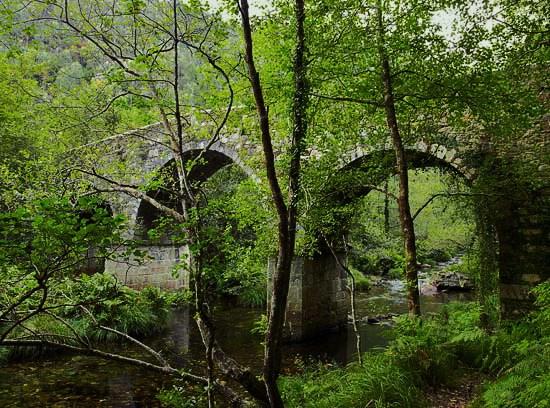 Ponte de Malvide.