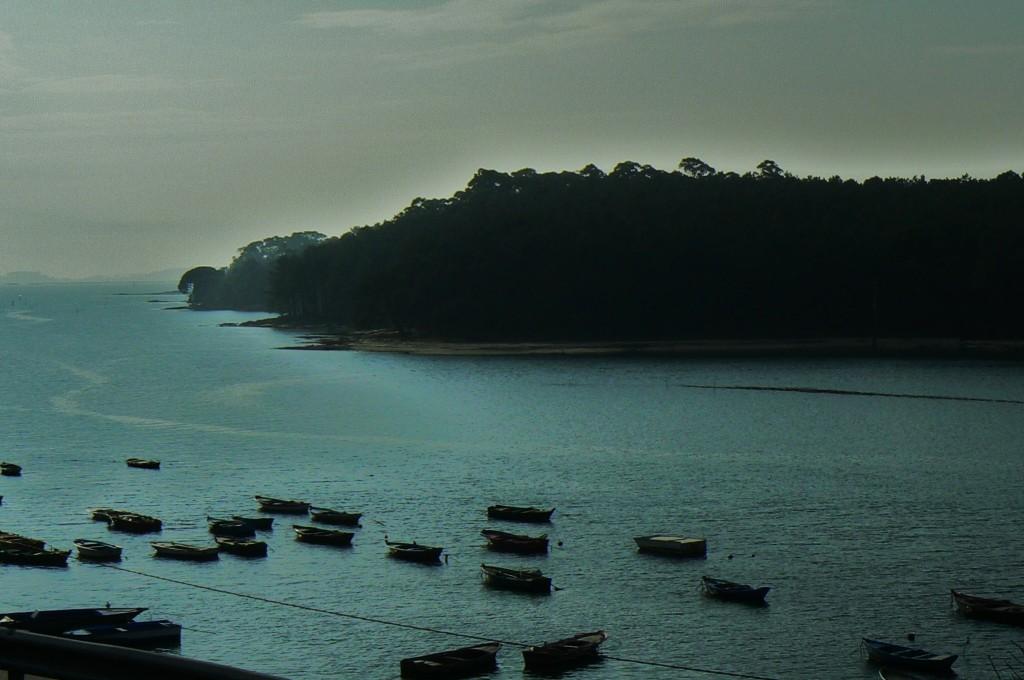 Las gamelas y la isla cuando llega la bruma...