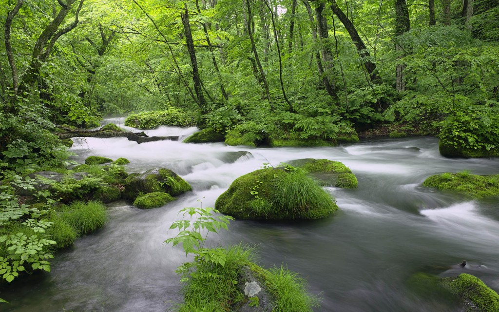 ?? (River in Akita Prefecture, Japan)