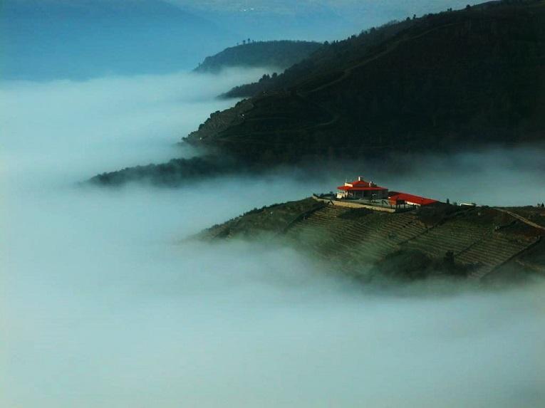Una bodega en la cumbre de la niebla.