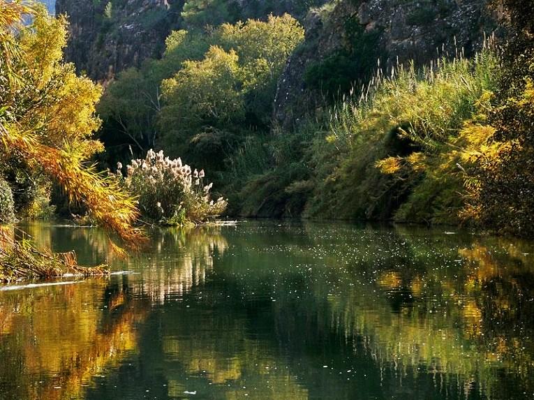 Río Navia entre las montañas