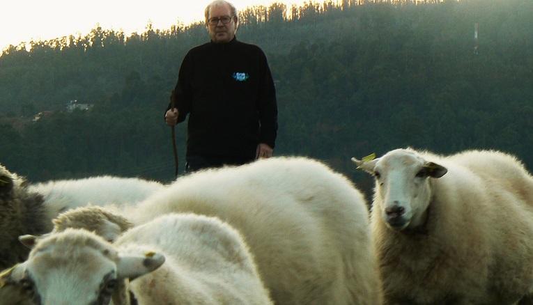 aunque sea entre ovejas