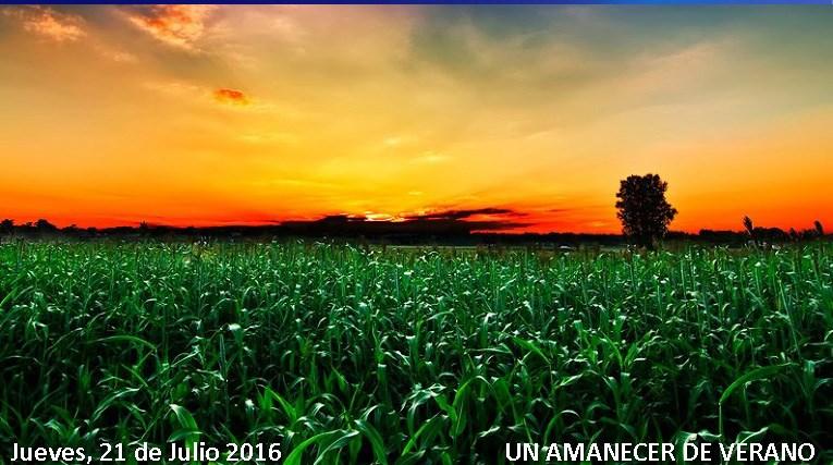 21 DE JULIO +++ FOTO