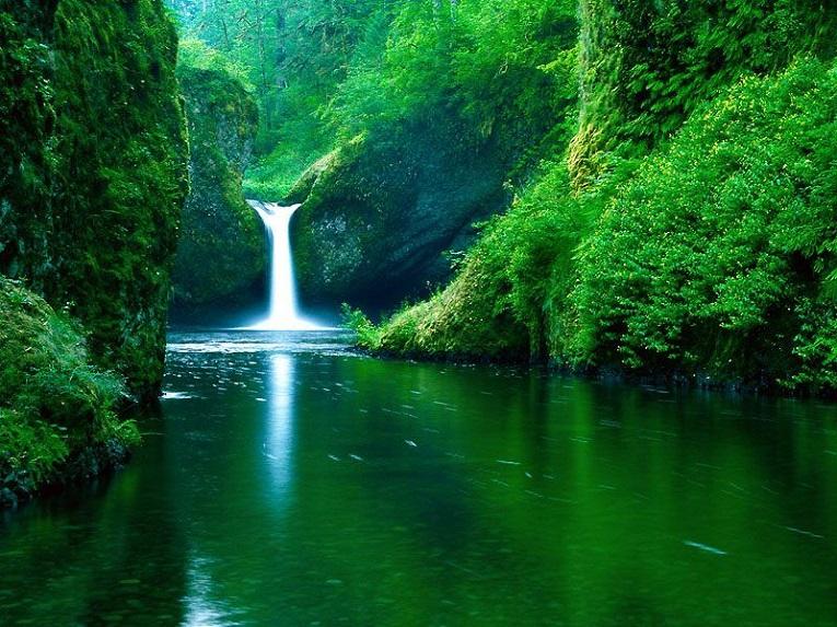 El agua crea formas insólitas en O Courel.