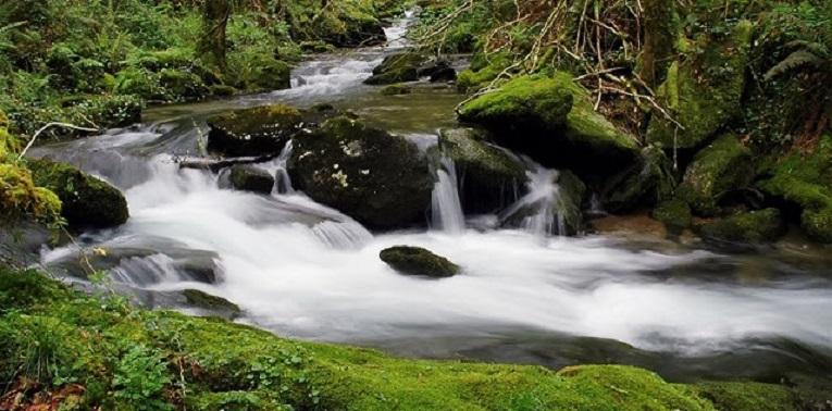 Fluyen los pequeños rios como el Entoma