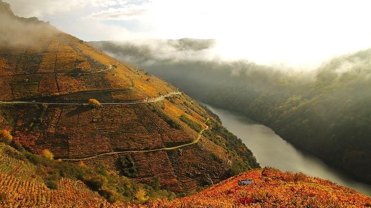 Dos ríos y dos vinos
